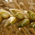 Wheat As An Aspect Of The Tree Of Knowledge